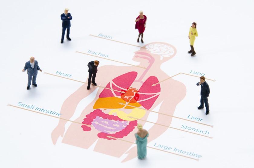 転職時の健康診断で不採用になる?診断書の取得方法とその注意点4つ